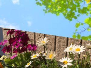 花粉の季節。春こそフェイス・ケアを!