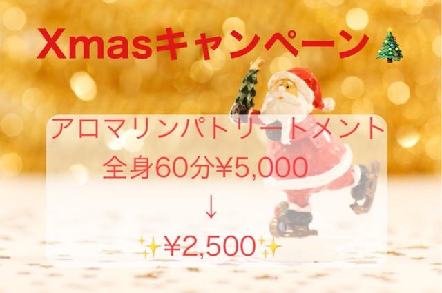 Xmasキャンペーン50%off★12月1日〜12月28日